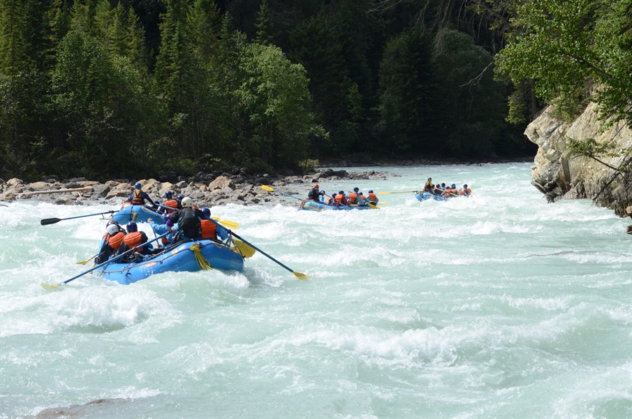 Glacier Fed Waters: What to Expect Whitewater Rafting on the Kicking Horse
